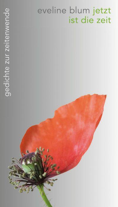 jetzt_e-book-cover